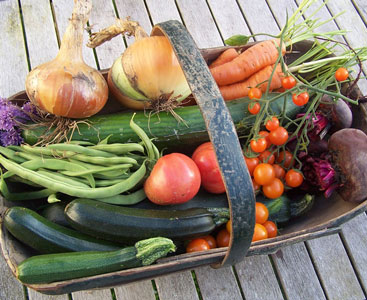 Fresh home grown vegetables