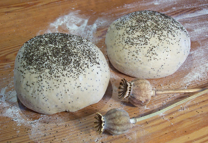Image of poppy seed bread ready to prove